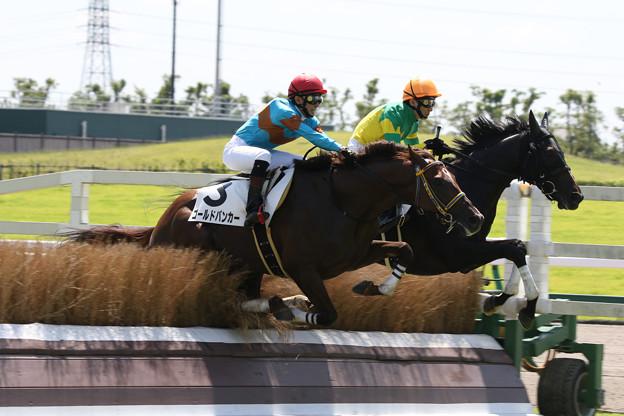 ゼンノトライブ・ゴールドバンカー  レース(17/07/15・1R)