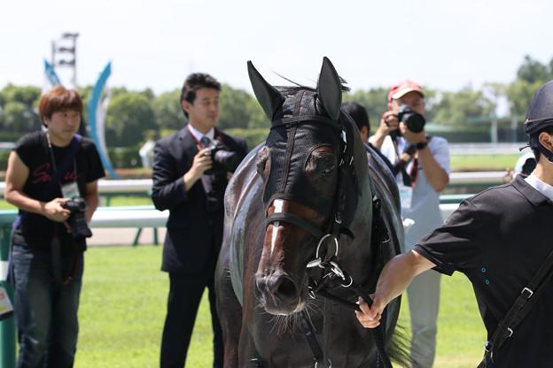 ゼンノトライブ_2(17/07/15・1R)
