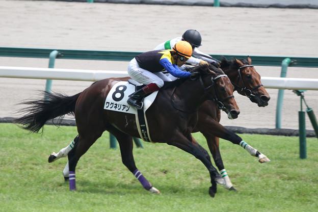 ワグネリアン レース(17/07/16・新馬戦)