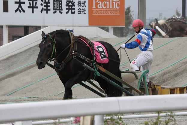 ブルーアタック レース(17/09/23/・2R)
