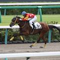 アツコ レース(17/09/30・4R)