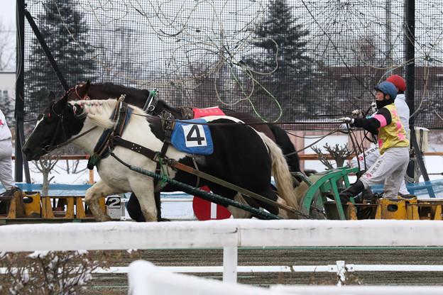 モノクロチャン レース(17/11/26・3R)
