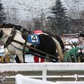 写真: モノクロチャン レース(17/11/26・3R)