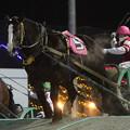 写真: ベニコマ レース(17/11/25・7R)