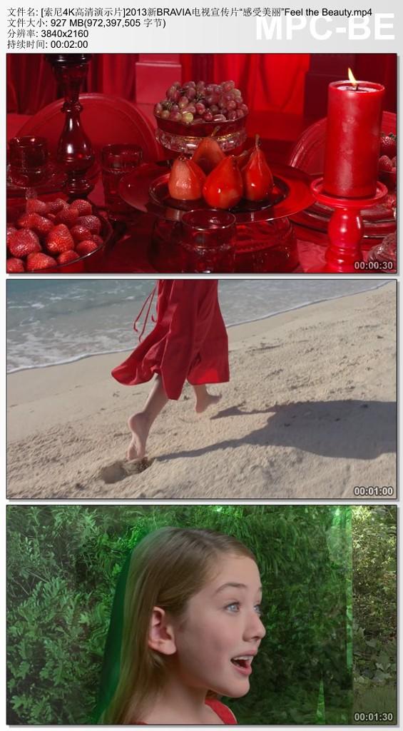 "BRAVIA电视宣传片 ""感受美丽""【4K】"