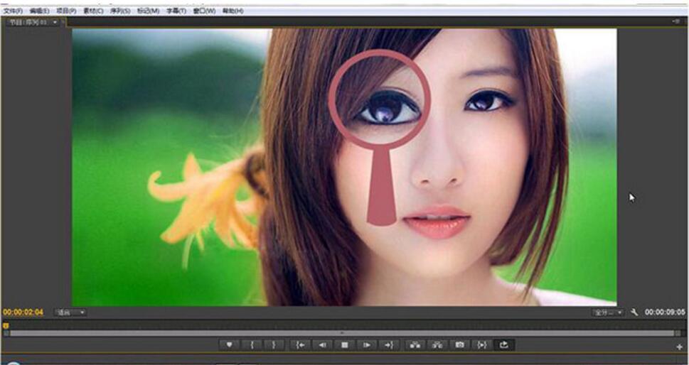 Premiere Pro CS6中文版实战与特效视频教程