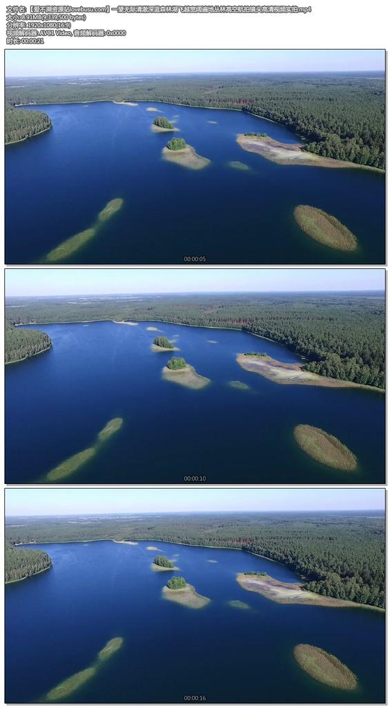 一望无际清澈深蓝森林湖飞越宽阔遍地丛林高空航拍镜头高清视频实拍
