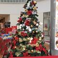 Photos: クリスマスツリー 足柄SA