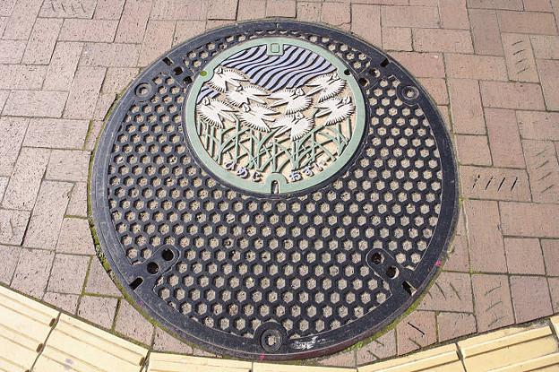 s7075_姫路市マンホール_おすい_カラー_親子型