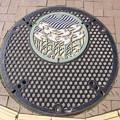 Photos: s7075_姫路市マンホール_おすい_カラー_親子型