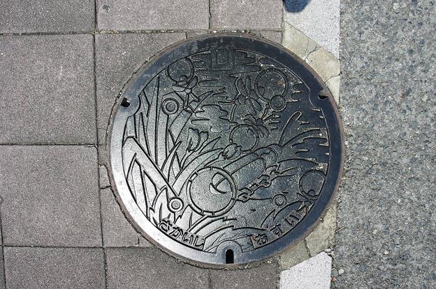 s5887_堺市マンホール_さかいし_おすい