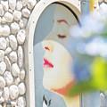写真: 壁の花