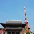 Photos: 寺とタワーと七夕飾り