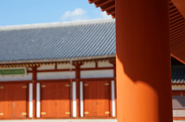 玄奘三蔵院伽藍回廊