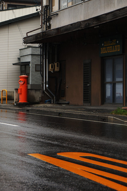 Photos: 濡れた路面に映える色