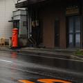 濡れた路面に映える色