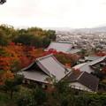 写真: 圓光寺