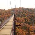 写真: 紅葉の中を散歩できます
