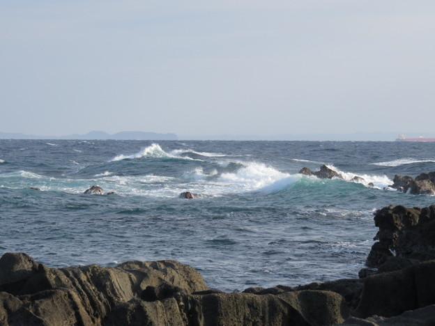 城ヶ島 海その761 IMG_1110