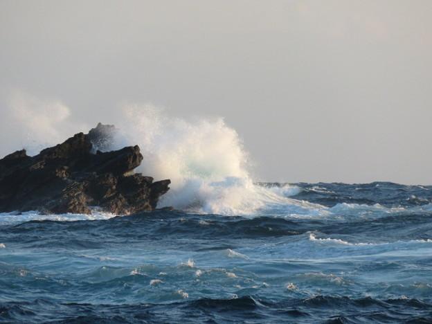 城ヶ島 海その764 IMG_1367