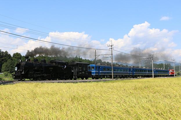 東武本線C11 207+ヨ8634+14系+DE10 1099 SL大樹