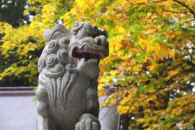 戸隠神社#3