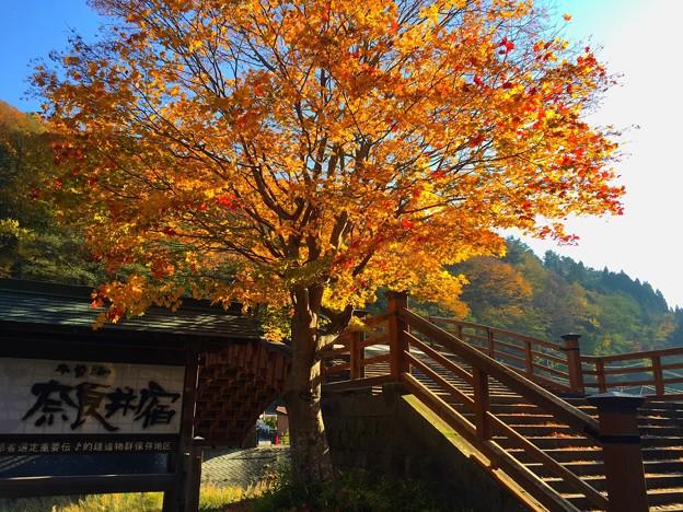 奈良井の紅葉