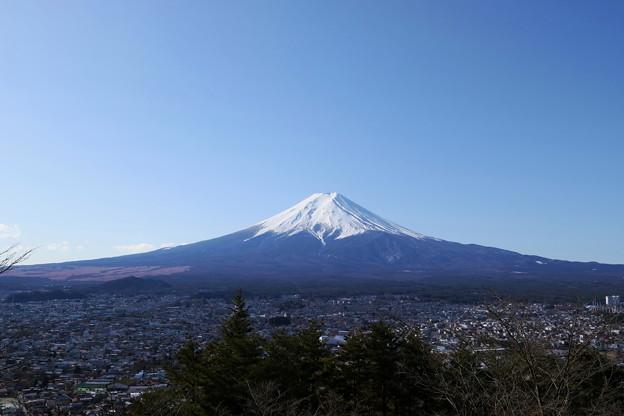 写真: 朝倉山浅間公園からの富士山