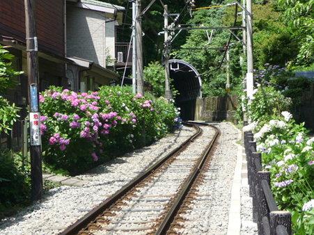 090612-御霊神社 (5)