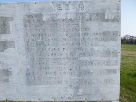 170414-上瀬谷原っぱ (43)