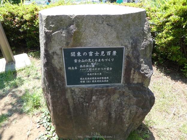 写真: 170617-富士山(松田町ハーブガーデン) (1)
