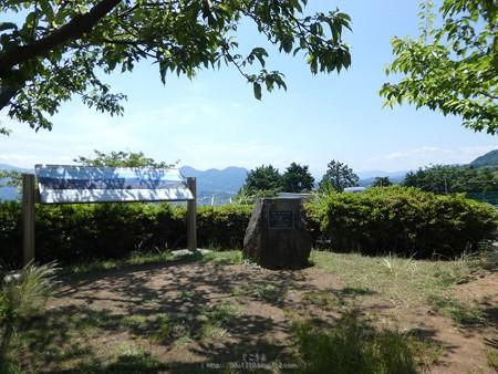 170617-富士山(松田町ハーブガーデン) (2)