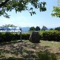 写真: 170617-富士山(松田町ハーブガーデン) (2)