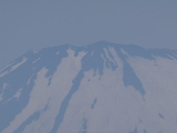 写真: 170617-富士山(松田町ハーブガーデン) (6)