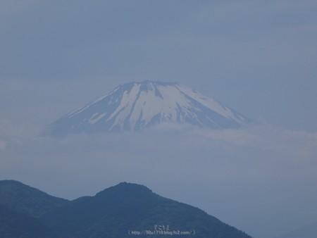 170617-富士山(松田町ハーブガーデン) (8)