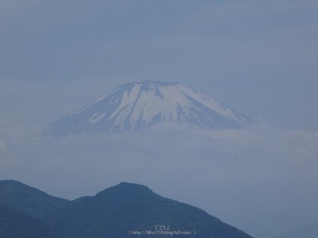 写真: 170617-富士山(松田町ハーブガーデン) (8)