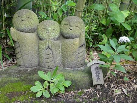 170628-鎌倉 長谷観音 (153)