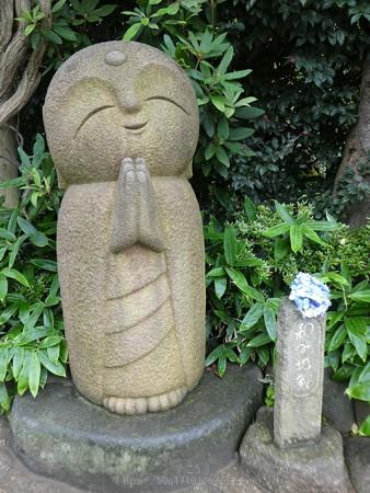 170628-鎌倉 長谷観音 (202)