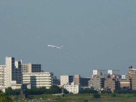 090816-六郷の渡し (21)
