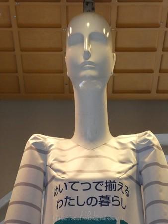 170702-ナナちゃん (4)