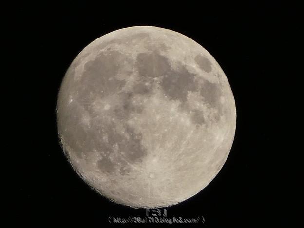 写真: 170707-お月さん (1)