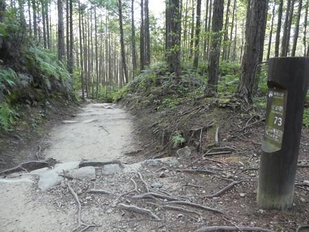 160325-熊野古道 小辺路 (28)