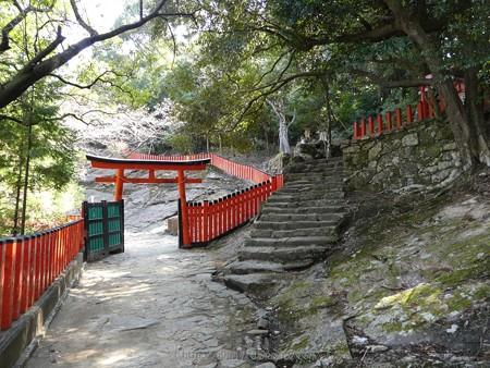 160324-神倉神社 (20)