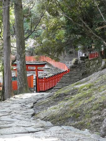 160324-神倉神社 (36)