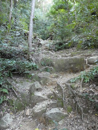 160324-神倉神社 (46)