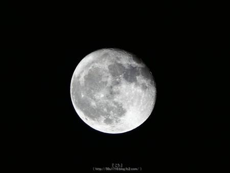 1710007-お月さん (2)