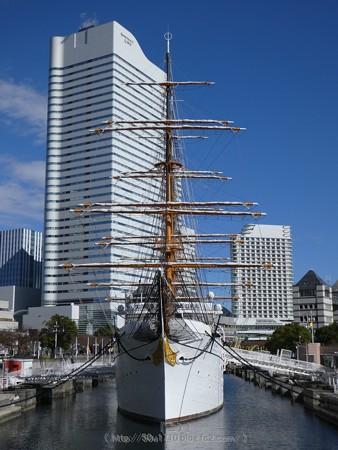 171112-日本丸 総帆展帆 (4)