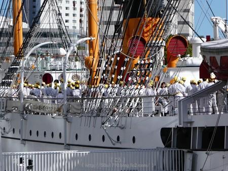171112-日本丸 総帆展帆 (11)