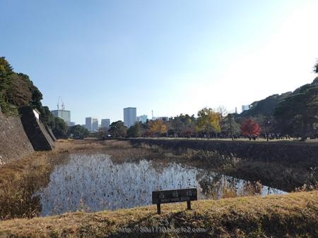 171207-皇居 (63)