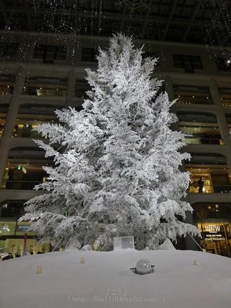 171216-クリスマスツリー KITTE (17)